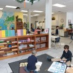 Making the Case for Montessori